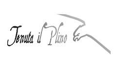 Tenuta Il Plino – San Carlo – Emilia Romagna
