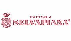 Fattoria Selvapiana – Rufina – Toscana